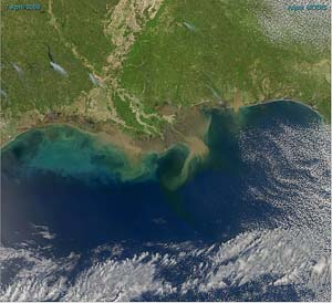 Sediment in the Gulf of Mexico Map