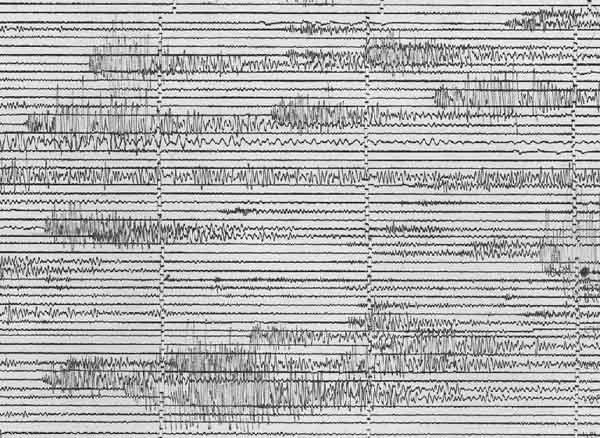 Harmonic tremor record.
